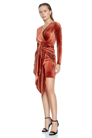Brown velvet long sleeve mini dress