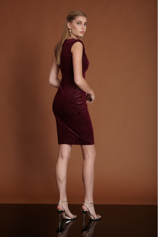 Claret red velvet sleeveless mini dress